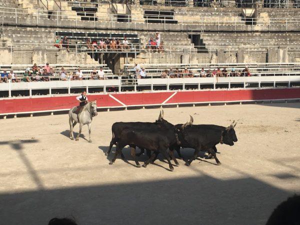 arena_arles